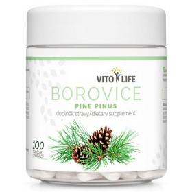 VITO LIFE - Borovice - Pinus 100 cps