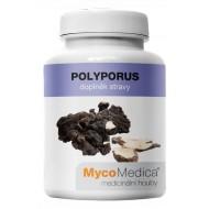 MycoMedica Polyporus 90 cps.